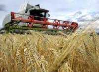 Rolnictwo praca Anglia w gospodarstwie jako pomocnik Oxford od maja 2014