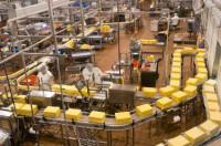Anglia praca dla kobiet od zaraz na produkcji przy pakowaniu sera Londyn