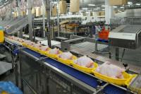 Oferta pracy w Anglii na produkcji w przetwórni mięsnej od zaraz Liverpool