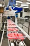 Anglia praca dla Polaków na linii produkcyjnej przy pakowaniu mięsa Watton