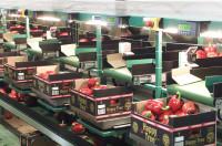 Dam pracę w Anglii w pakowalni w Chartham przy pakowaniu owoców