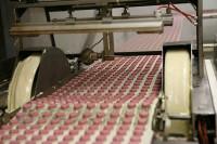 Praca Anglia przy taśmie produkcyjnej w fabryce spożywczej od zaraz Malton