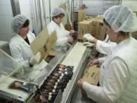 Anglia praca dla Polaków w fabryce na produkcji lodów Skelmersdale