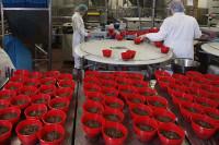 Dam pracę w Anglii przy produkcji puddingów bez znajomości języka Manchester