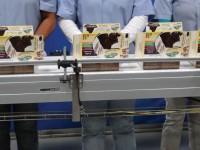 Anglia praca od zaraz na taśmie produkcyjnej pakowanie art. spożywczych Richmond