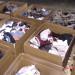 pakowanie-odziezy-ubran-magazyn5