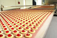 Praca w Anglii dla par bez języka na produkcji ciastek od zaraz Luton