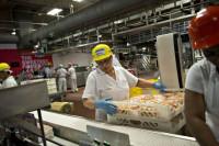 Oferta pracy w Anglii pakowanie spożywcze bez doświadczenia Bognor Regis
