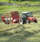 Rolnictwo od zaraz sezonowa praca w Anglii przy pieleniu Nuneaton