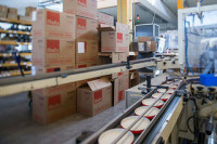 Praca Anglia w Newry na produkcji przy sortowaniu bez znajomości języka