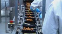 Praca w Anglii bez języka od zaraz produkcja żywności Chichester