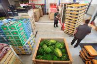 Dam pracę w Anglii Londyn na magazynie z owocami i warzywami