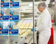 Dam pracę w Anglii dla par przy pakowaniu sera bez języka Sheffield od zaraz