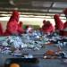 sortowanie-odpadow-smieci-praca-2018