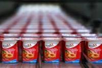 Praca w Anglii od zaraz na produkcji jogurtów bez znajomości języka Luton UK