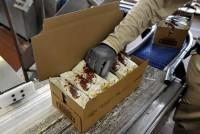 Dla par oferta pracy w Anglii przy pakowaniu lodów bez znajomości języka Nottingham
