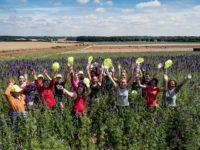 Anglia praca przy kwiatach od zaraz w ogrodnictwie bez języka 2018 Birmingham UK