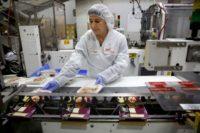 Anglia praca stała na produkcji od zaraz dla par w Stafford UK