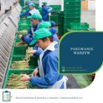 Anglia praca bez języka przy pakowaniu warzyw od kwietnia 2019 Farningham Kent UK