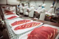 Praca w UK na produkcji mięsnej od zaraz bez znajomości języka w Bangor (Walia)