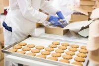 Bez znajomości języka praca Anglia od zaraz przy pakowaniu ciastek na produkcji