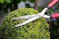 Fizyczna praca w Anglii dla ogrodnika od zaraz w Londynie 2021